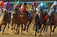 horse race bunched